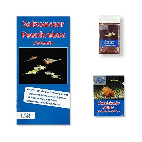 Artemia franciscana Zucht-Set (klein): Zuchtansatz (Salzwasser Feenkrebse Eier aus Deutscher Zucht), Urzeitkrebse Futter & Anleitung - Futtertiere als Lebendfutter für Fische - Brine Shrimps