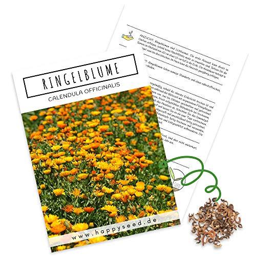 Ringelblumen Samen (Calendula Officinalis) - Vielseitige Heilpflanze mit essbaren Blüten & ideal für eine bunte Blumenwiese (Gelb/Orange)