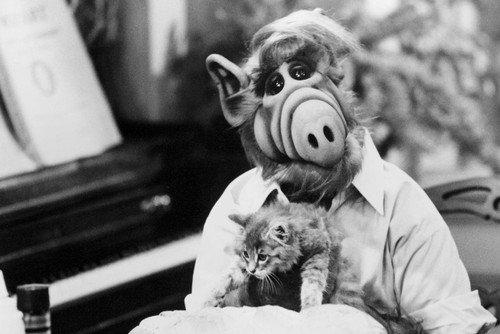 Nostalgia Store Poster, Motiv Alf Holding Cat by Piano TV-Show 61 x 36 cm