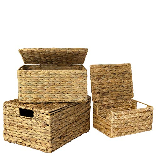 Wicker Storage Basket Bins w Lid & Handle for Home Organization and Decor,Closet Wicker Lidded Baskets for Shelves w Insert Handles,Straw Wire Woven Storage Organizer Kitchen,Pantry (3 WaterHyacinth)