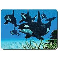 バスマット 玄関マット 足ふきマット,シャチの群れがサンゴ礁に沿って泳ぎ、魚の獲物を探しています海の写真プリント,滑り止め ソフトタッチ 丸洗い 洗濯 台所 脱衣場 キッチン 玄関やわらかマット 50 x 80cm