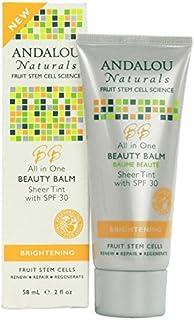 Andalou All in One Beauty Balm Sheer Tint SPF 30 58ml (Pack of 6) - アンダロウすべての1の美しさバームシアーティントSpf 30 58ミリリットル (x6) [並行輸入品]