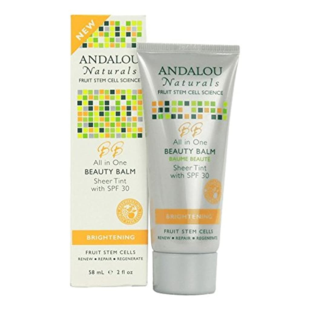Andalou All in One Beauty Balm Sheer Tint SPF 30 58ml (Pack of 2) - アンダロウすべての1の美しさバームシアーティントSpf 30 58ミリリットル (x2) [並行輸入品]