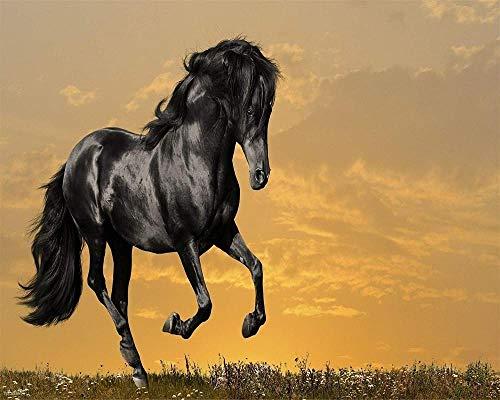 DAGE Puzzles für Erwachsene DIY 1000 Stück Pferd im Sonnenuntergang Home Decoration Puzzle Geschenk