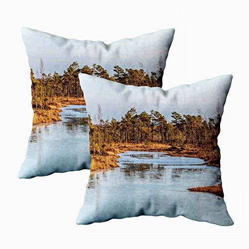 Taie d'oreiller, taies d'oreiller amusantes, taille standard, paysage naturel avec glace au sol glacée froide ICY sur le lac des marais et décor de canapé de chambre à coucher à la maison 2 pièces