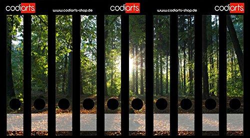 Set 10 Stück schmale Ordner-Etiketten selbstklebend Ordnerrücken Sticker Sonnenstrahlen, Natur, Sonne im Wald, Sonnenuntergang auf Waldlichtung