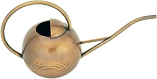 Achla Designs WC-01 Brass Metal Small Watering Can Houseplants