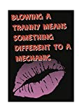 iCandy Combat Blowing A Tranny Means Something Different to A Mechanic Humor Home Man Cave Garage Wall Decoration