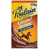 Poulain Chocolat en Poudre grand Arôme Boîte, 250g