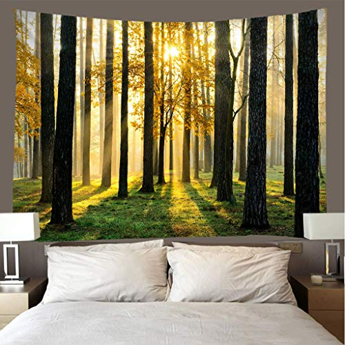JMHomeDecor Tapestry 3D Printing Romantic Sunny Woods Light Weight Portable Bed Cover Multi-Function Throw Wall Hanging 150(H) X200(W) Cm