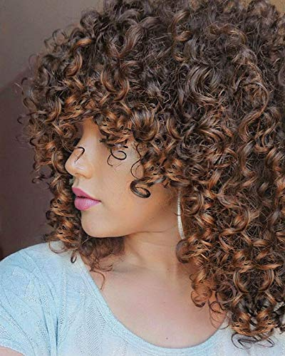 Lizzy Short Curly Afro Wigs for Black Women Full Synthetic Natural Ombre Brown Afro Kinkys Curly Wig with Bangs Shoulder Length Heat Resistant Curly Wigs for Daily Use (Ombre Brown)