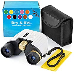 Best Travel Binoculars for Safari 2019: A Buyer's Guide
