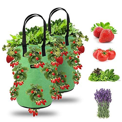 Ulikey 2Pcs Bolsas de Cultivo de Fresa, 3 Gallones Bolsa para Plantas Fresas Bolsa de Macetas Colgantes con Asas No Tejidos Transpirables con 13 Agujeros para Papas, Tomates y Fresas (2pcs - Verde)
