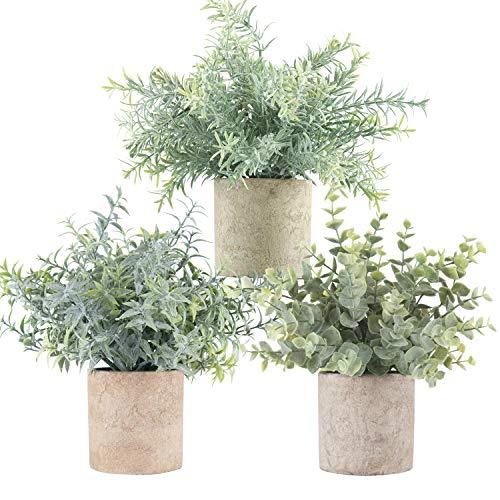 Der Rose 3 Pack Mini Potted Fake Plants Artificial Faux Eucalyptus Plants for Home Office Desk Room Decoration