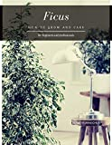 Ficus: How to grow and care (English Edition)
