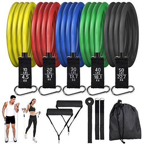 Hansiro Resistance Bands Set | Expander Fitnessbänder Widerstandsbänder | Trainingsbänder mit Türanker Griffen für Krafttraining Yoga Physiotherapie | Heimtrainer für Männer Frauen