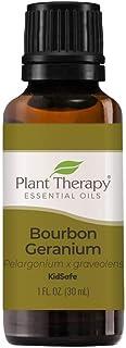 Plant Therapy Geranium Bourbon Essential Oil 100% Pure, Undiluted, Natural Aromatherapy, Therapeutic Grade 30 mL (1 oz)
