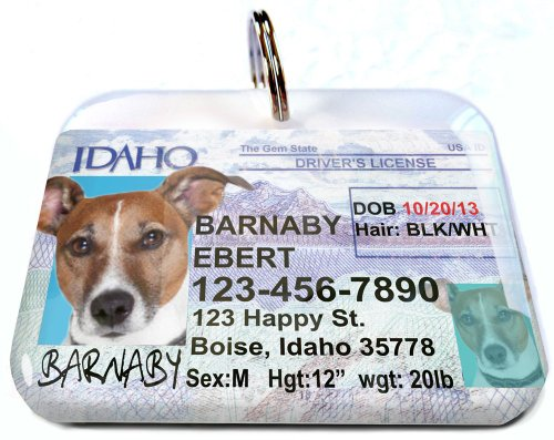 ID4Pet Idaho Driver License tags for Cats or Dogs (Large 1.50')
