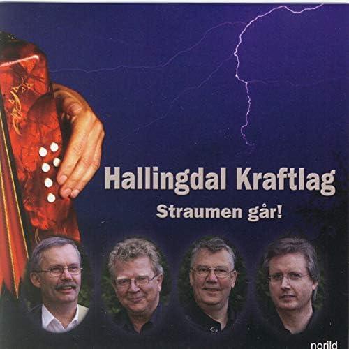 Hallingdal Kraftlag