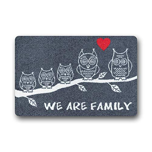 Wdskbg Custom Felpudo We Are Family Non Slip Felpudo Welcome Floor Entrance Door Mat Inside Outside 23.6x15.7