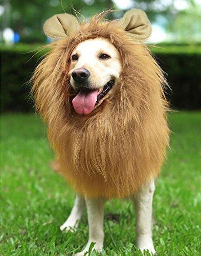 Nixikoo Cosplay Kostüme Haustier kostüm Hundekostüm Löwe Mähn Perücke Löwenmähne Hund Kleider Haar Schal mit Ohren, Allerheiligen Kostüme für Große Hunde/Katzen