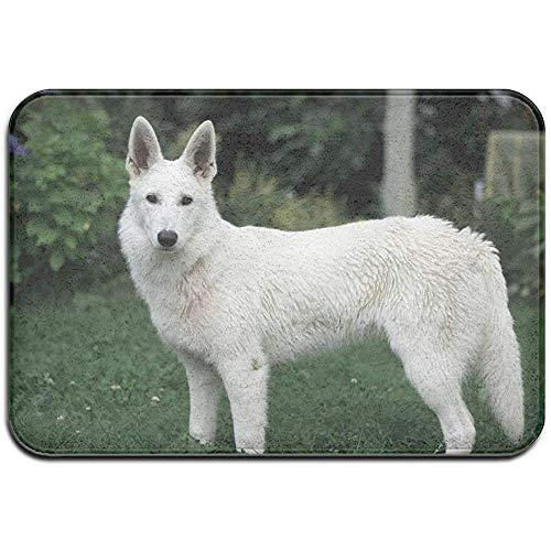 DaiMex White Bernese Mountain Puppy Outdoor mat huisdeurmatten ingangstapijt standaard tapijt