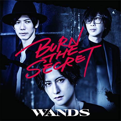 「BURN THE SECRET」初回限定盤 (CD+DVD)