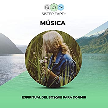 Música Espiritual del Bosque para Dormir