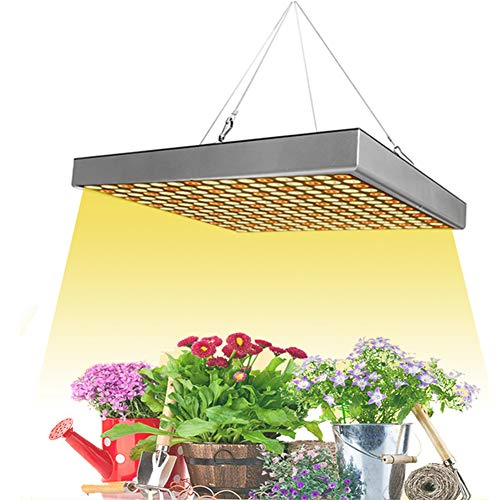 POOPFIY 1000W Led Grow Light Phyto Lamp Phytolamps para plántulas Lámpara para Plantas Grow Carpa Box Led Lights