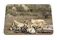 22cmx18cm マウスパッド (ライオン死骸ゼブラフード捕食者) パターンカスタムの マウスパッド