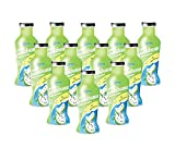 Jans 100% Soursop/Guanabana Juice with Pulp - 8.96 fl oz | 100% Fresh Juice | No Sugar Added | Not From Concentrate (Pack of 12)