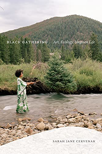 Black Gathering: Art, Ecology, Ungiven Life (Black Outdoors: Innovations in the Poetics of Study) (English Edition)