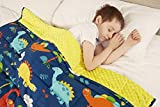 viceroy bedding Weighted Blanket for Children Kids Autism Anxiety - 100% Cotton with Sensory Soft Minky Dot Reverse Side - Heavy Weight Blanket for Sleep Therapy (Dinosaur Blue, 90cm x 125cm, 2.3kg)