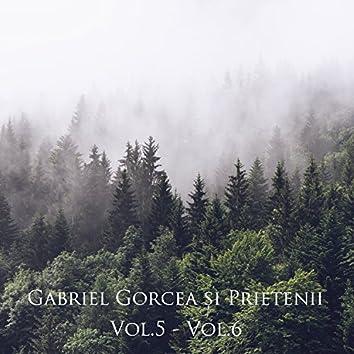 Gabriel Gorcea și Prietenii, Vol. 5 - Vol. 6