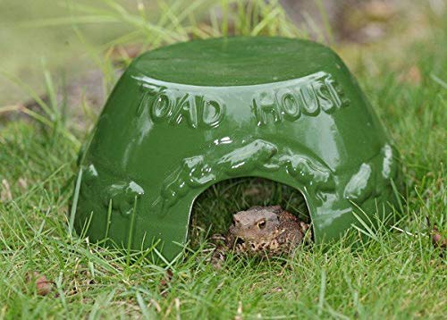 Fallen Fruits Toad House