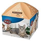Calendario de Adviento y caja de regalo para los gatos.