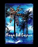 Playa Del Carmen: Mexican Holiday Christmas Journal Notebook Shopping Organizer Holiday Food Meal Party Planner Budget Expense Tracker. Tropical Palm Tree Soft Cover 7.5 x 9.25, 120 Pages.