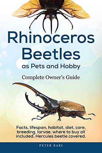 Rhinoceros Beetles as Pets and Hobby - Complete Owner's Guide: Facts, lifespan, habitat, diet, care, breeding, larvae, where to buy, Hercules beetle all covered. (English Edition)