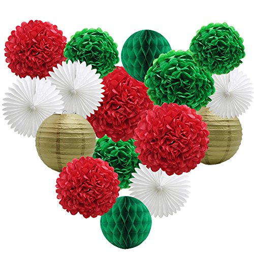 Party Decorations Kit Green Red White Birthday Bridal Shower Decor Paper Pom Poms Flowers Honeycomb Balls Lanterns Paper Tissue Fans Photo Backdrop Wedding Christmas Bachelorette Supplies