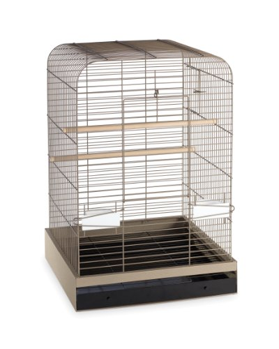 Prevue Hendryx 124PUT Pet Products Madison Bird Cage, Putty,5/8""