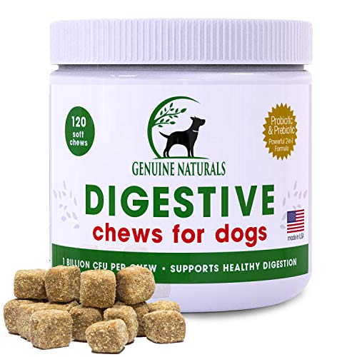 Top 10 best selling list for supplement for dog digestive issues