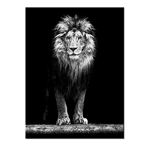 YISUMEI Hem Gewichte Vorhang Duschvorhang Anti-Schimmel Duschvorhangringe Wasserabweisender 180x200 cm Schöner Löwe