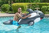 Poolmaster Jumbo Whale Rider Inflatable Swimming Pool Float