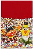HuGuan Leinwand Druck Poster 60x90cm Sesamstraße Bert und
