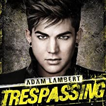 Adam Lambert 24X36 Banner Poster RARE #FC732366