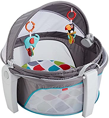 Fisher-Price On-the-Go Baby Dome, Grey/Multi-Color [Amazon Exclusive]