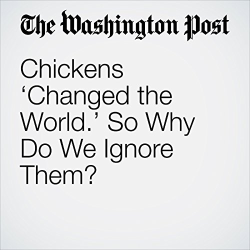Chickens 'Changed the World.' So Why Do We Ignore Them? copertina