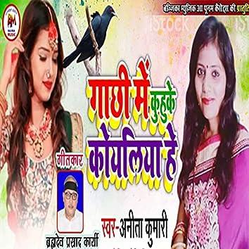 Gachhi Me Kuhuke Koyaliya He (Maithili)