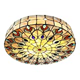 20' Wide Vintage Tiffany Ceiling Light, NIUYAO Hand-Made Chandelier Remote Flush Mount Lighting Fixture with Peacock Tail Painting Shade (Green) 298230