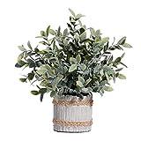 ZYOUXIU - Plantas de imitación de flores artificiales, para casa, oficina, vestíbulo, restaurante, negro, 15*30cm